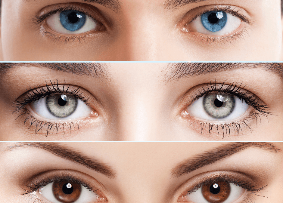 How is Your Eye Color Determined