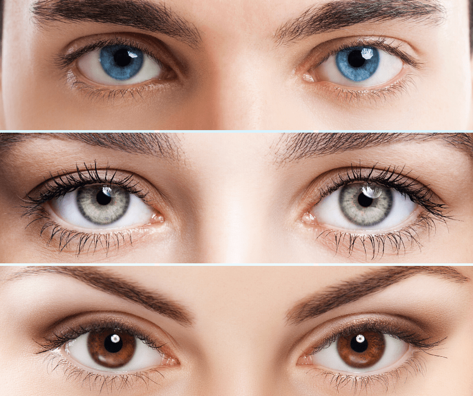 How is Your Eye Color Determined | Valley Eyecare Center
